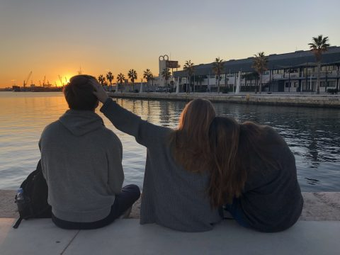 ALC - Fall 2018 - Robert Fox - Pals by the Pier - photo contest entry