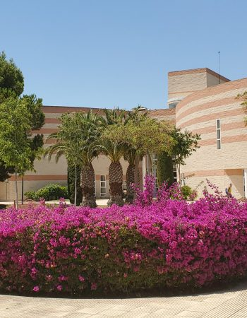 Alicante University